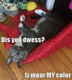 Dis you dwess? Iz moar MY color