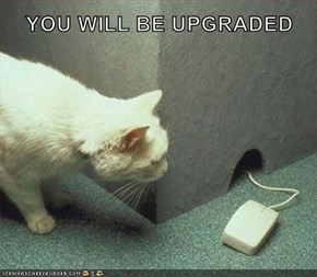 YOU WILL BE UPGRADED