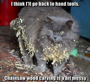 I think I'll go back to hand tools.  Chainsaw wood carving is a bit messy