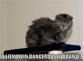 U LIEK LIVIN DANGEROUSLY DOAN U?