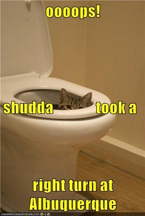 oooops! shudda               took a right turn at Albuquerque