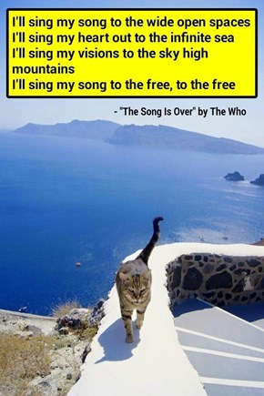 """The Song Is Over"" by The Who (recaption: http://tinyurl.com/jte9sy7"