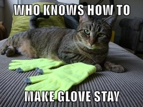 WHO KNOWS HOW TO   MAKE GLOVE STAY