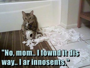 """No, mom.. I fownd it dis way.. I ar innosents."""