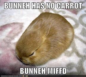 BUNNEH HAS NO CARROT  BUNNEH MIFFD