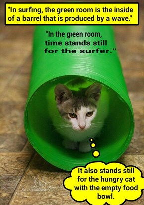 """In the green room, time stands still for the surfer"" (recaption: http://tinyurl.com/j8u7htt"