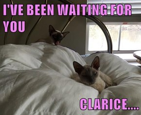 I'VE BEEN WAITING FOR YOU  CLARICE....