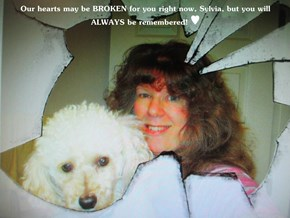 Our hearts may be BROKEN for you right now, Sylvia, but you will ALWAYS be remembered! ♥