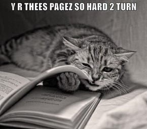 Y R THEES PAGEZ SO HARD 2 TURN