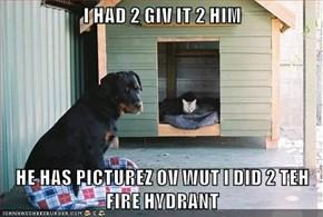 I HAD 2 GIV IT 2 HIM  HE HAS PICTUREZ OV WUT I DID 2 TEH FIRE HYDRANT