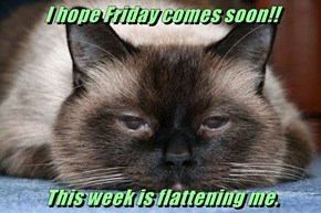 I hope Friday comes soon!!  This week is flattening me.