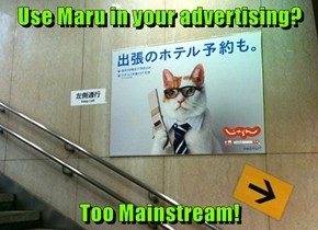 Use Maru in your advertising?   Too Mainstream!