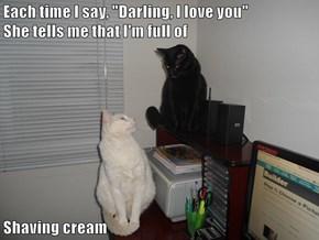 "Each time I say, ""Darling, I love you""                    She tells me that I'm full of  Shaving cream"