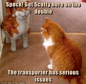 Spock! Get Scotty here on the double  The transporter has serious issues