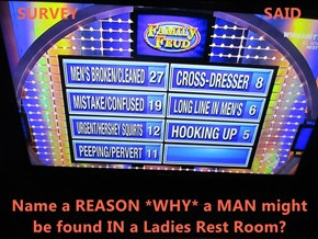 SURVEY                                         SAID  Name a REASON *WHY* a MAN might be found IN a Ladies Rest Room?