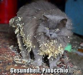 Gesundheit, Pinocchio....