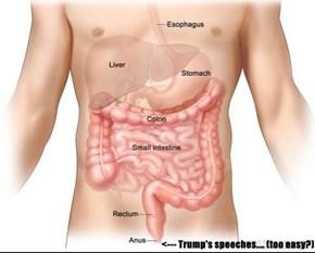 <--- Trump's speeches.... (too easy?)