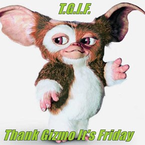 T.G.I.F.  Thank Gizmo It's Friday