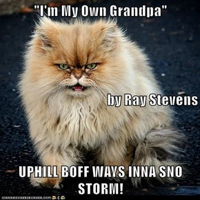 """I'm My Own Grandpa""  by Ray Stevens UPHILL BOFF WAYS INNA SNO STORM!"