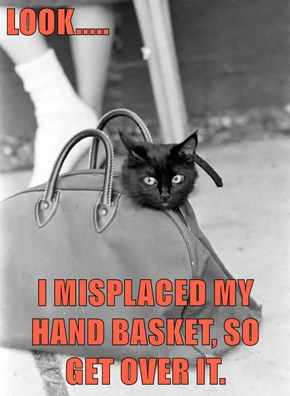 LOOK.....  I MISPLACED MY HAND BASKET, SO GET OVER IT.
