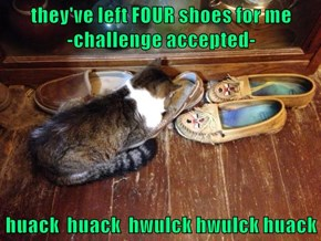 they've left FOUR shoes for me                                                     -challenge accepted-  huack  huack  hwulck hwulck huack