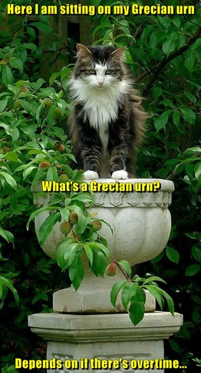 Here I am sitting on my Grecian urn  What's a Grecian urn? Depends on if there's overtime...