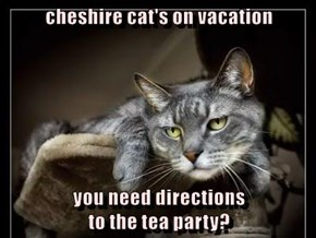 cheshire cat's on vacation  you need directions                                         to the tea party?