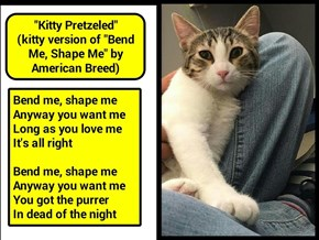 """Kitty Pretzeled"" (kitty version of ""Bend Me, Shape Me"" by American Breed) (recaption: http://tinyurl.com/hwghljh"