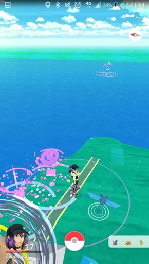 Pokémon GO Player Discovers Lure in Impossible Location, and Does What We'd All Try to Do