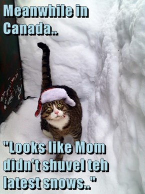 "Meanwhile in Canada..  ""Looks like Mom didn't shuvel teh latest snows.."""