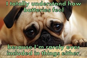 I totally understand how batteries feel  because I'm rarely ever included in things either.