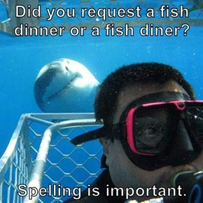 Did you request a fish dinner or a fish diner?  Spelling is important.