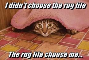 I didn't choose the rug life   The rug life choose me...