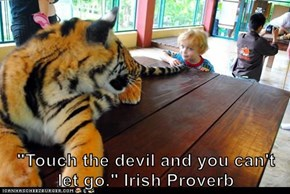 """Touch the devil and you can't let go."" Irish Proverb"