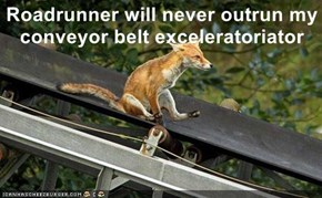 Roadrunner will never outrun my conveyor belt exceleratoriator