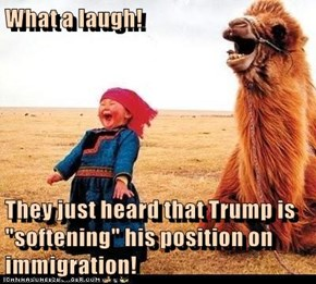 "What a laugh!  They just heard that Trump is ""softening"" his position on immigration!"