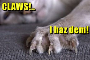 CLAWS!.. I haz dem!