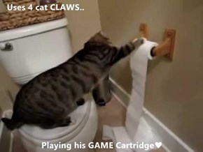 Uses 4 cat CLAWS..  Playing his GAME Cartridge♥