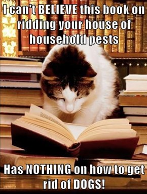 This Home Improvement Book In My Human's Library Was a COMPLETE Waste Of My Time!