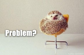 You Appear Prickly...