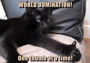 WORLD DOMINATION!  One thumb at a time!