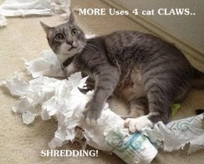MORE Uses 4 cat CLAWS..              SHREDDING!