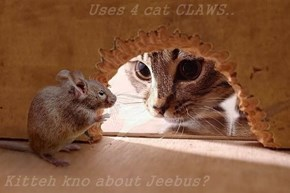 Uses 4 cat CLAWS..  Kitteh kno about Jeebus?