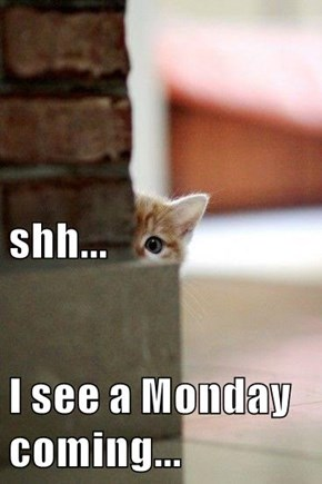 shh... I see a Monday coming...