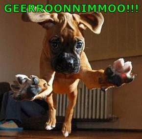 GEERROONNIMMOO!!!