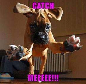 CATCH  MEEEEE!!!