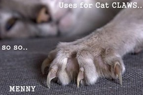 Uses for Cat CLAWS.. so so..    MENNY