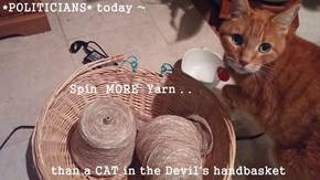*POLITICIANS* today ~                  Spin  MORE  Yarn . .      than a CAT in the Devil's handbasket