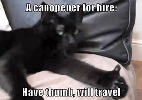A canopener for hire:   Have thumb, will travel