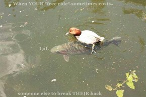 When YOUR *free ride* sometimes costs                                 LoL               someone else to break THEIR back
